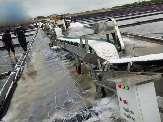 Đặc điểm băng tải muối và ứng dụng